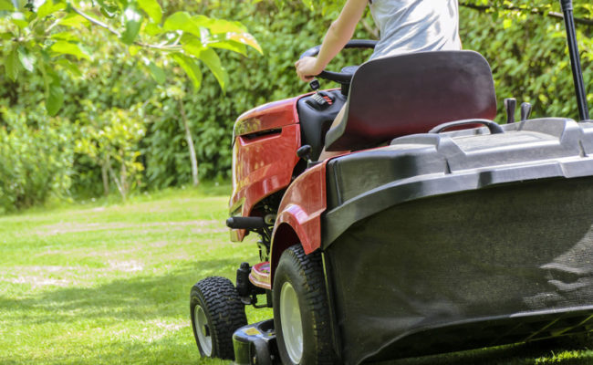 Umgebungspflege_Gartenunterhalt_Liegenschaft-Umfeld_Pflege